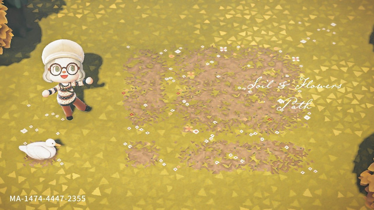 qr-closet:grassy dirt path with small flowers🌼