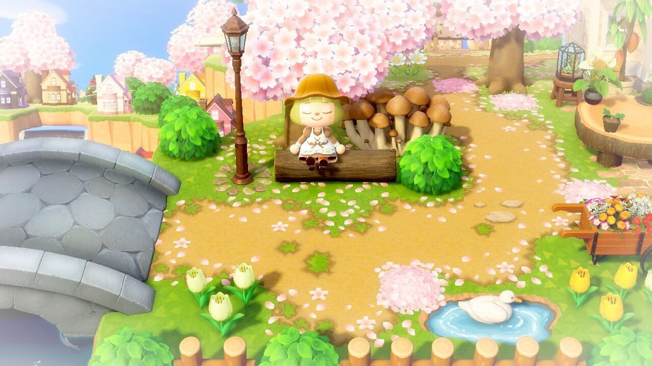 qr-closet:cherry blossom path 🌸