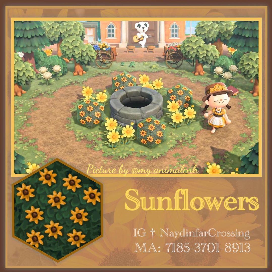 qr-closet:sunflower bush ✨
