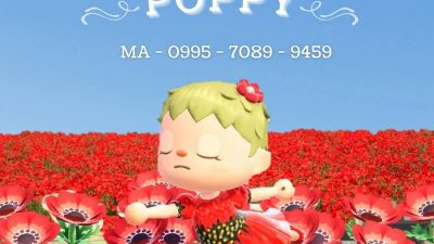 """Animal Crossing: I created a dress for National Poppy day, where we wear a red poppy to honor those killed in war. The red poppy has been the symbol of support since John McCrae wrote """"In Flanders Fields"""" in World War I. As we enter the Memorial Day weekend, take a moment to remember those Fallen. ❤️"""