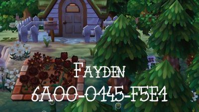 ACNH QR Fayden @mayorjohanna   6A00-0145-F5E1