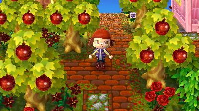ACNL Paths growlithe-crossing:  With the changing of the seasons I found…