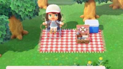 Animal Crossing: I have made this carpet for a little pic-nic !